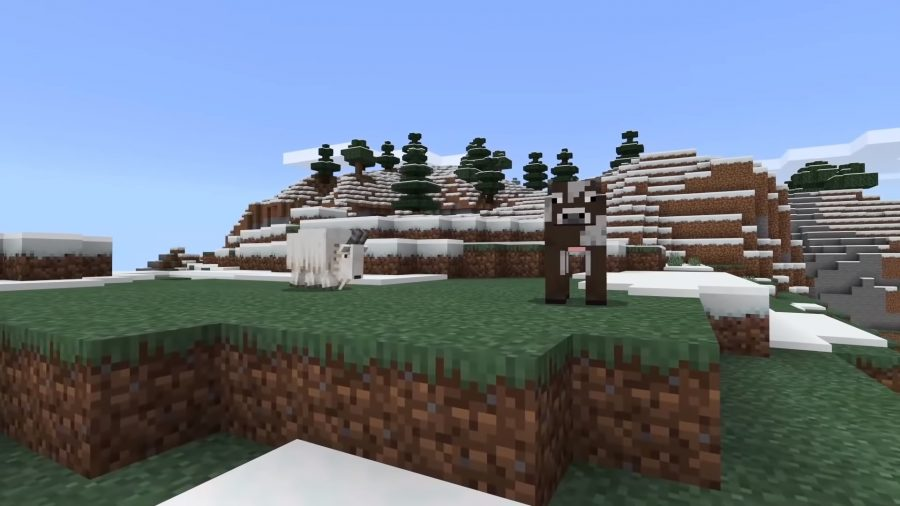 A goat in Minecraft is charging at a cow, who is unaware at the impending pain.